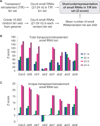 genome wide profiling and analysis of arabidopsis sirnas