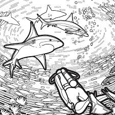 free shark coloring pages shark week