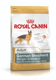 belgian shepherd for sale in malaysia german shepherd in malaysia royal canin