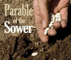 the sower u2013 malaysia u0027s most comprehensive christian news website
