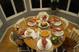 how to a pet friendly thanksgiving vetdepot