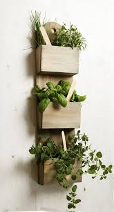 appealing indoor herb garden wall mounted 90 on interior