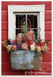 Plants For Winter Window Boxes - fall or winter window boxes love the galvanized planter
