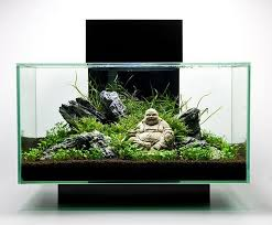 Aquascape Design Aquascape U2013 Basic Principles And Elements Of Landscaping Under Water