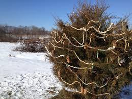 christmas decorations conococheague institute blog