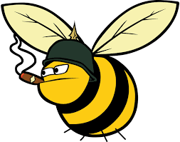 world war bee u2013 what u0027s in a name the ancient gaming noob
