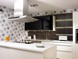 black and white kitchens with a splash of colour gray kitchen