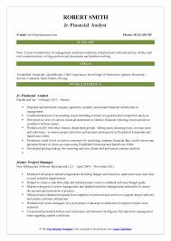 Summary Statement In Resume Accounting Resume Samples Examples And Tips