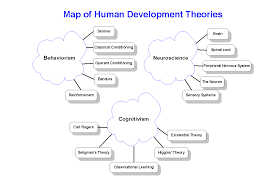Nervous System Concept Map Edpsy 317 Human Development Theory Concept Maps
