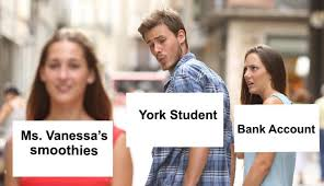 Meme High School - york community high school is a meme this is york