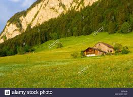 Col House Col Des Mosses Switzerland Europe Canton Vaud Mountain Wood