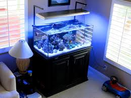 ati dimmable fixture question reef2reef saltwater and reef