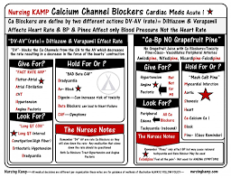 best 25 calcium channel blocker ideas on pinterest cardiac