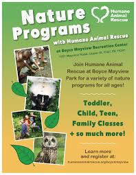 classes at boyce mayview park humane animal rescue shelter