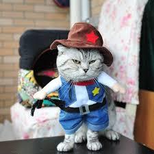 Kitten Halloween Costumes Pet 190 Disfraces Mascotas Images Costumes