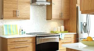 Bamboo Cabinets Kitchen Bamboo Cabinets Seattle Shaker A Cabinet Wholesalers Kitchen