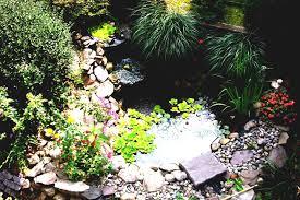 small backyard pond ideas garden designs beautiful design decpot