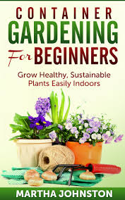 Plants Indoors by Cheap Pottery For Plants Indoors Find Pottery For Plants Indoors