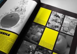 Free Indesign Portfolio Template free indesign portfolio book presenter portfolio