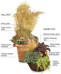 containers that keep kicking into fall gardening
