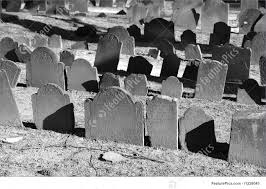 pictures of tombstones cemetery rows of tombstones bathed in sunlight in