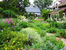gorgeous cottage garden design with backyard cottage garden design