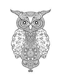 Patterned Flying Owl Drawing Illustration Zentangle Stylized Eagle Owl Stock Vector Illustration Of