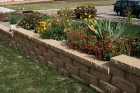Cheap Backyard Makeovers by Backyard Plants Ideas Keysindy Com