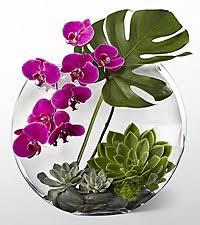 tropical flower arrangements tropical flower arrangements flower bouquets ftd