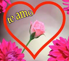 imagenes de amor para mi pc gratis rosas de amor para descargar rosas de amor