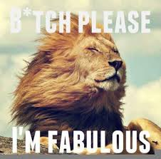 Im Fab Meme - bitch please all my single ladies pinterest meme and humor