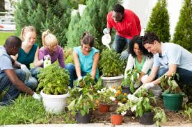 earth day activities for adults earth day 2016