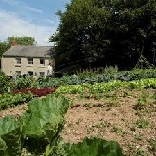 large year round veg patch rocket gardens