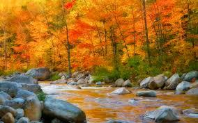 free pumpkin desktop wallpaper autumn river hd wallpaper pixelstalk net