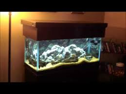 r j enterprises fusion 50 gallon aquarium tank and cabinet r j enterprises espresso oak empire canopy youtube