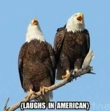 America Eagle Meme - laughs in american laughs in spanish know your meme
