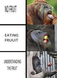 Eating Meme - no fruit eating fruit understanding the fruit memes