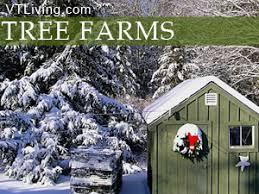 vermont christmas tree farms vermont tree farms wreaths holiday