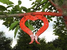 heart shaped horseshoes free images tree branch leaf flower jungle produce heart