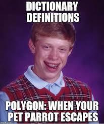 Meme Definitions - dictionary definitions polygon when your pet parrot escapes