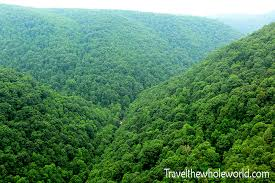 West Virginia forest images Hiking in monongahela forest including blackwater falls jpg