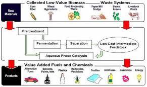 bioplastic research paper life in bioplastic it u0027s more fantastic a review