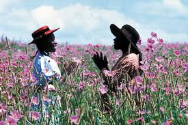 movies at the museum the color purple aspen art museum