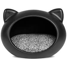 the ultimate cat care guide black cats cat and animal