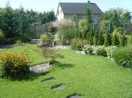 best backyard landscaping ideas ground cover plant ideas garden ideas