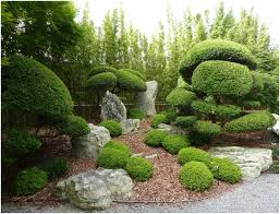 backyards stupendous latest japanese garden ideas free