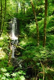 Fall Creek Falls Map Bridge Creek Falls Tillamook State Forest Oregon