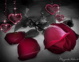 roses and hearts roses images hearts and roses wallpaper and background photos
