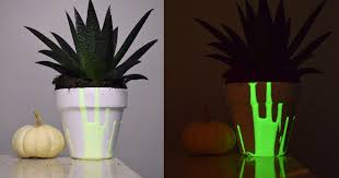 Glow In The Dark Planters by 3 Easy Ways To Make Your Yard Glow In The Dark