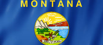 Montana Flag Montana Moves To Address Youth K 12 Daily The